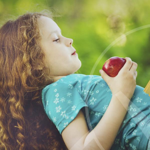 Leitura: os Frutos e Sementes